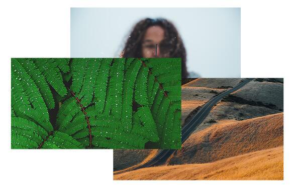 Salient主题折叠图片