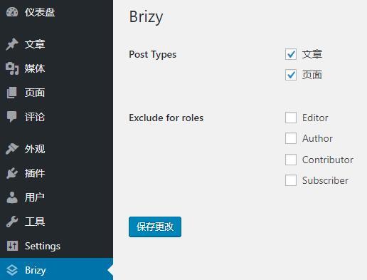 Brizy插件设置