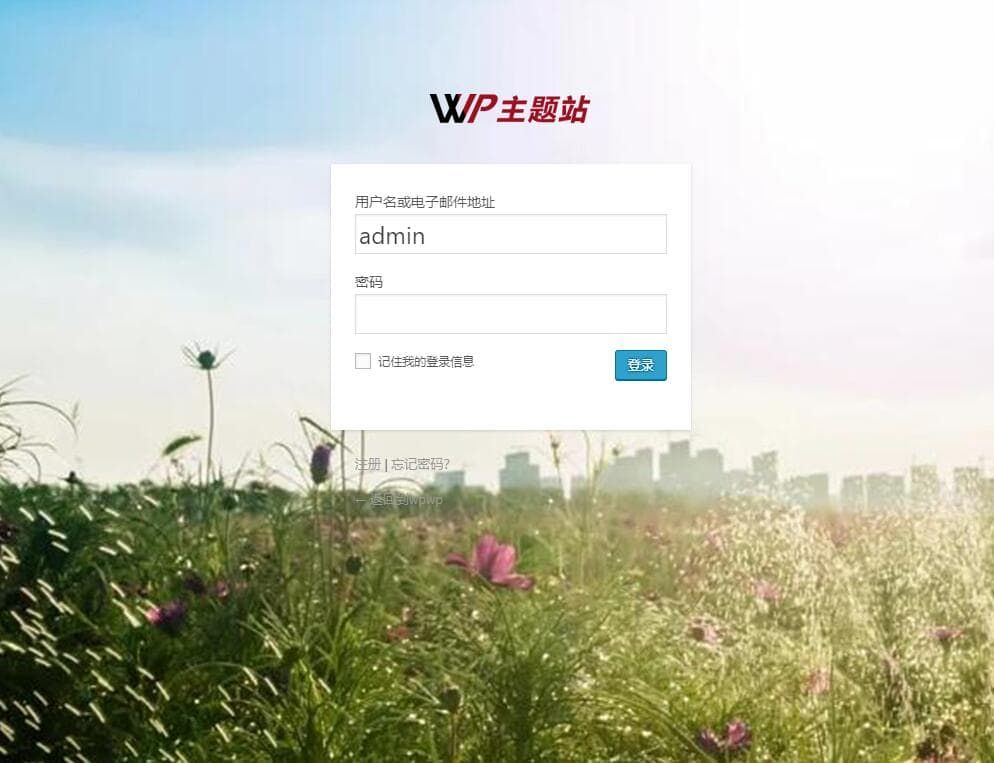 Custom Login Page Customizer界面示例