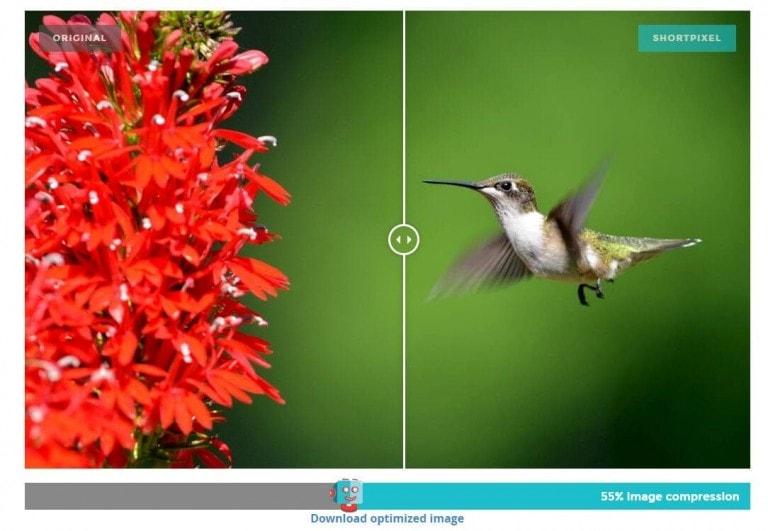 最好用的WordPress图片压缩插件对比评测